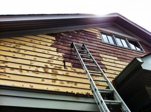 Sick of Painting and Repainting? Choose Vinyl Siding Installation